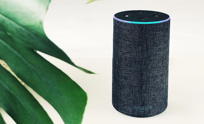 Radioline lance son appli Amazon Alexa